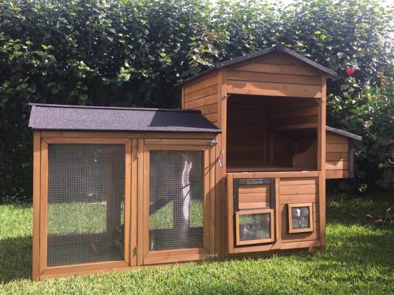Coop opening - Hen area
