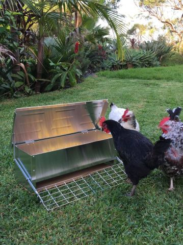 Automatic chicken feeder