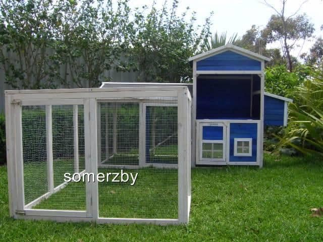 Guinea Pig Mansion hutch and run