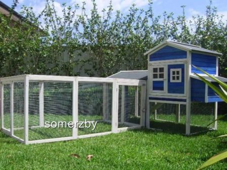 Blue and white Hutch and Run