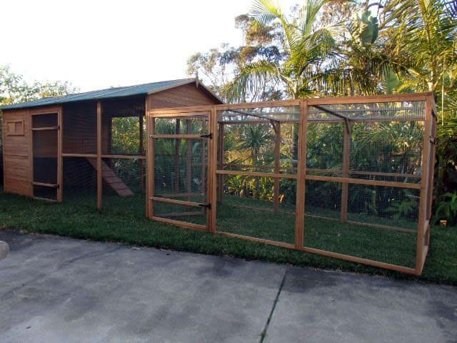 Catio enclosure and run