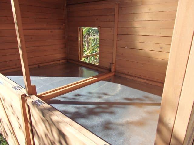Catio internal view