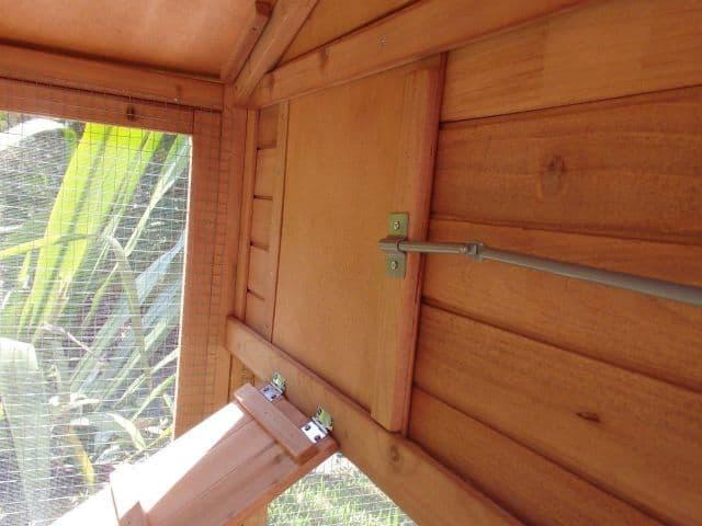 inside wood view