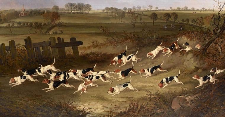 Beagles hunting painting