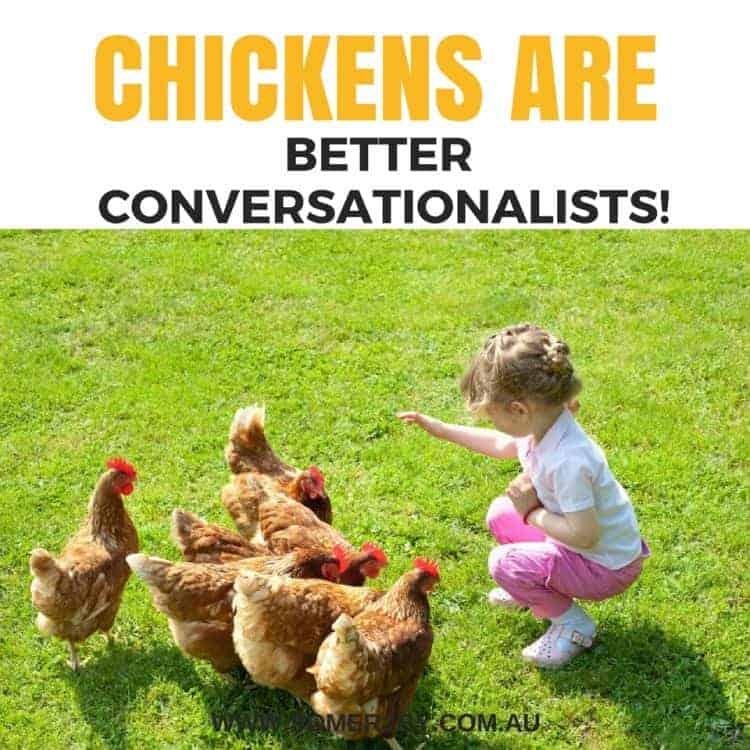 chooks are better conversationalists