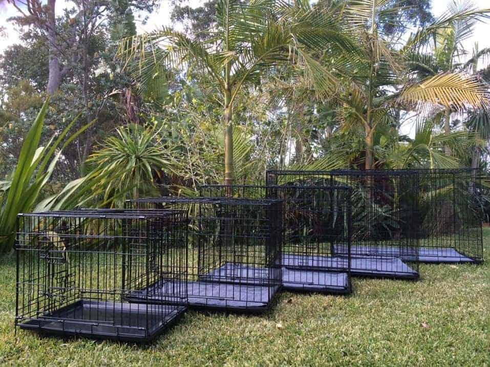 Crates protect your pets from flies, mosquitoes, sun, wind, and rain