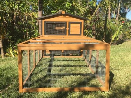 End view of Guinea pig hutch and run
