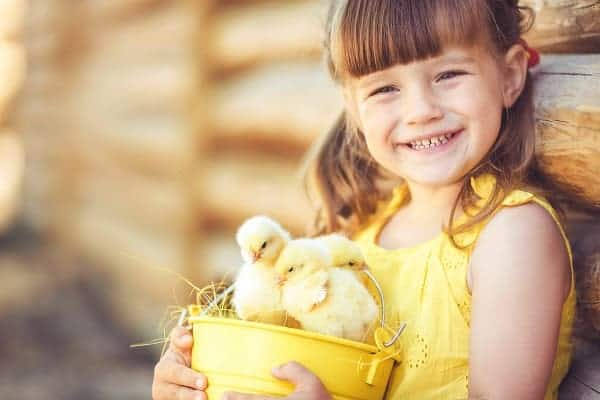 Kids playing outdoors with their pet chickens