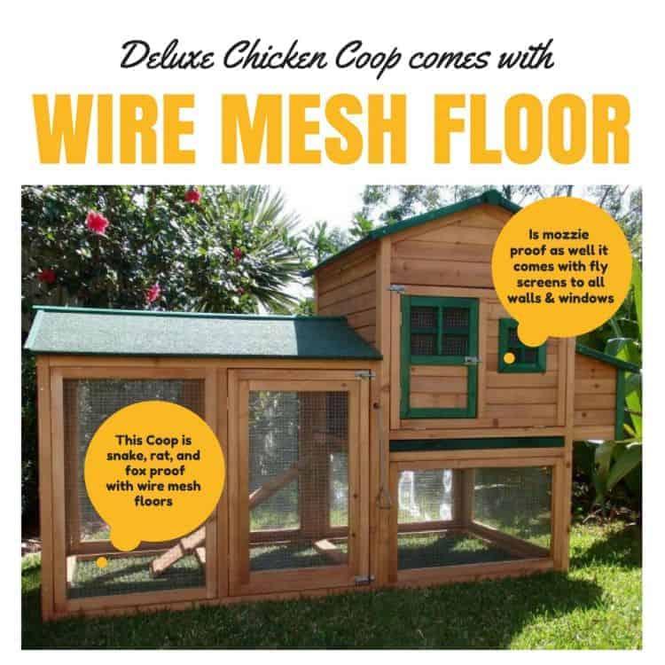 Deluxe chicken coop comes with wire mesh floor