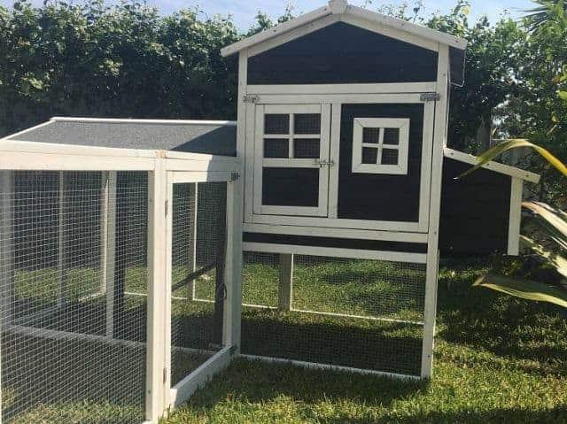 Mansion and run cat enclosure