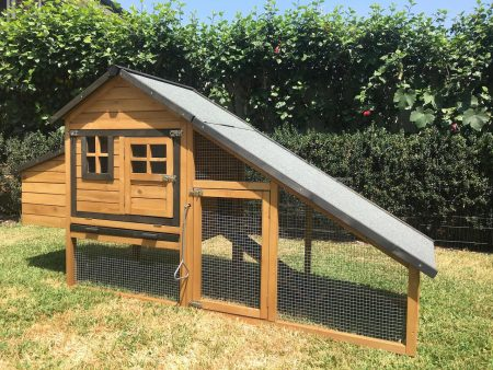 Strong Wire Mesh Keeps your Pets Safe from External Dangers