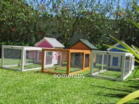 Guinea pig cottage