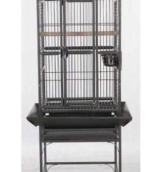 black parrot aviary