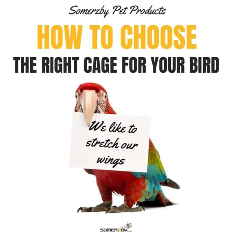 Buying a Bird Cage - How to choose which one is best for you