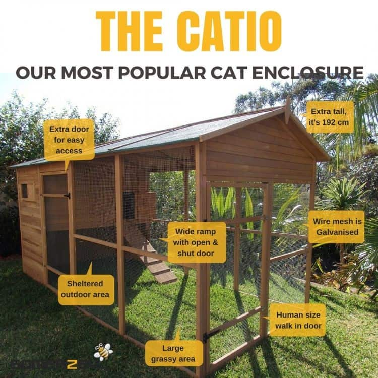 Catio for Cats by Somerzby