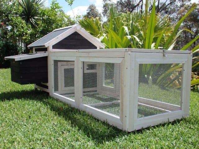 Deluxe small cottage for chickens