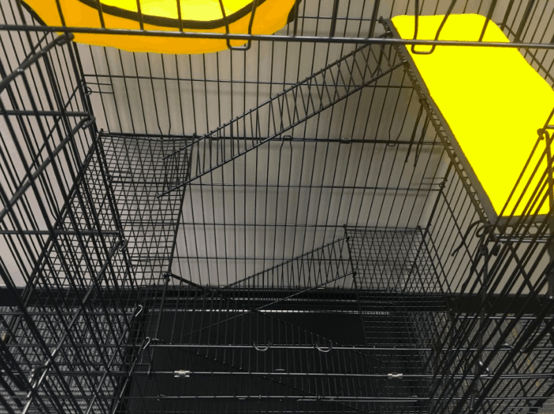 Safety Ramps for the ultimate freedom for your ferrets
