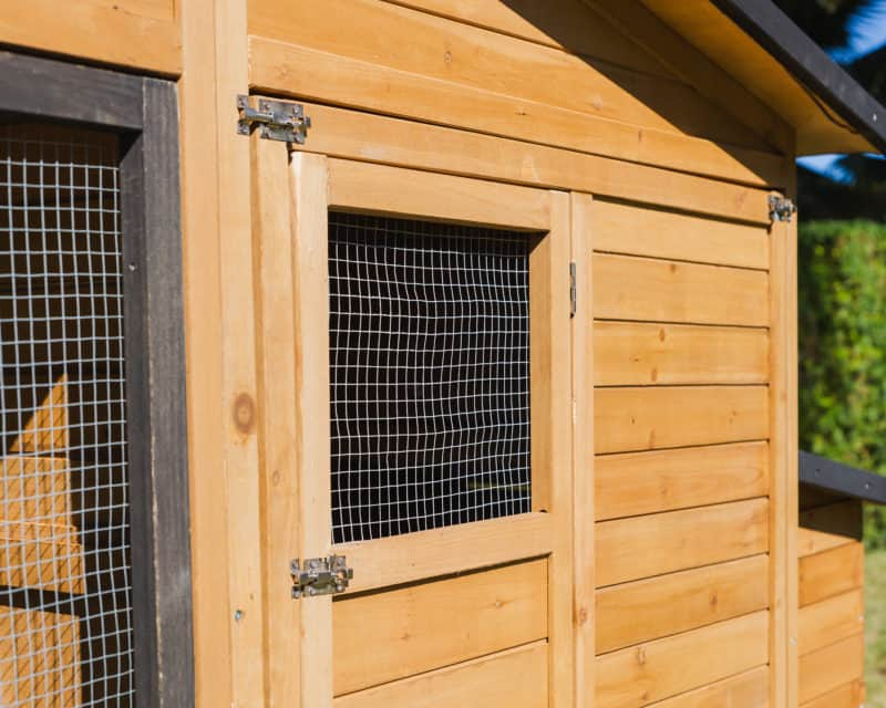 Modern Wooden Build with Metal Wire Mesh Windows and Walls for your Pets Safety