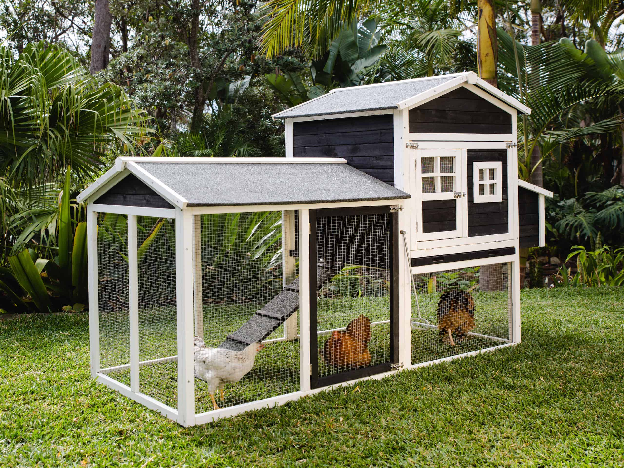 Mansion Chicken Coop by Somerzby