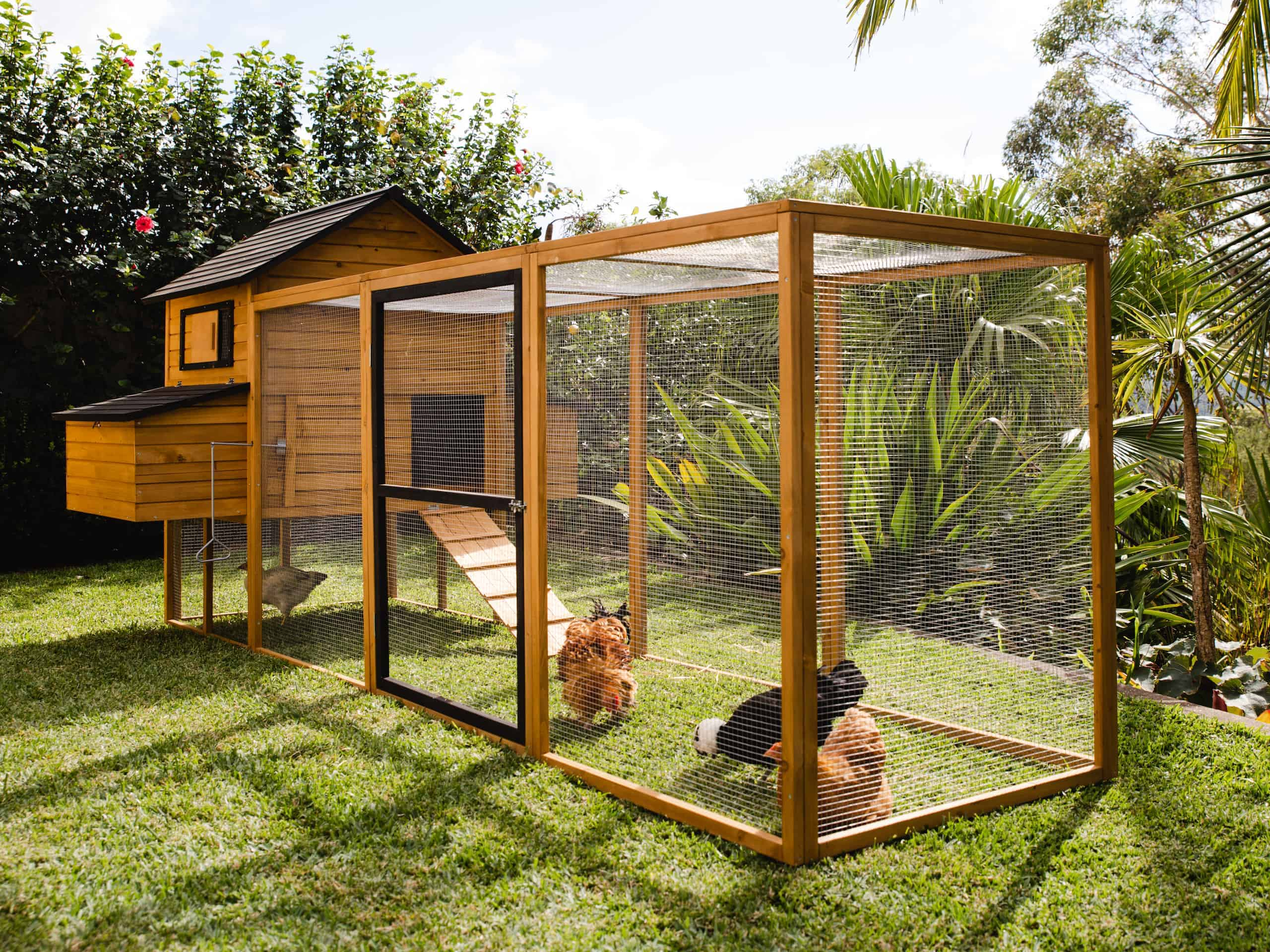 Cabana and Run Chicken Coop Package by Somerzby