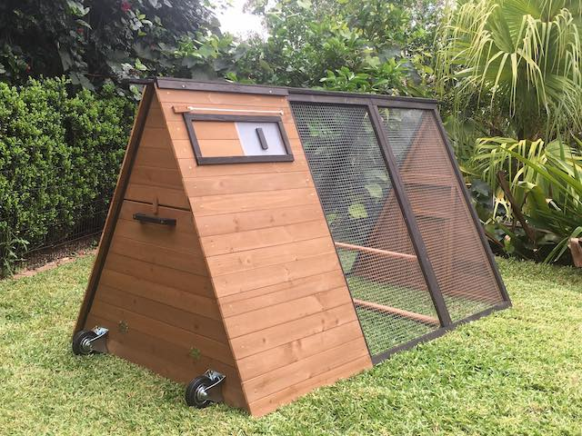 Holly - Somerzby Chicken Coop