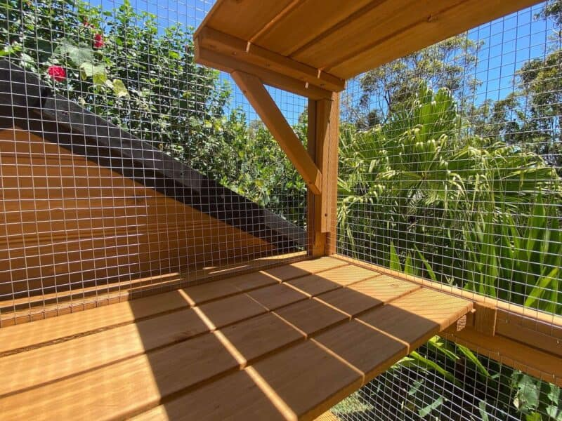 Stacey Cat Enclosure With Premium Wire Mesh