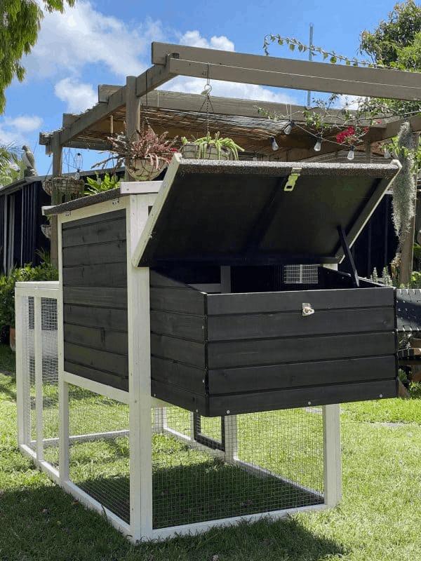 Back of Tudor Chicken Coop